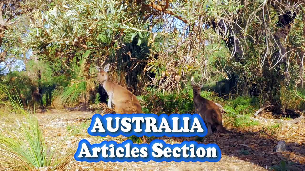 Australia articles section category Perth now