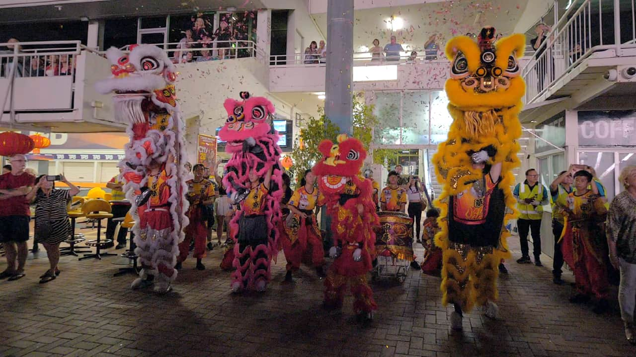 Lion dance articles section category Perth now